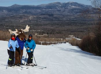 The moose on the hill at Sugarloaf